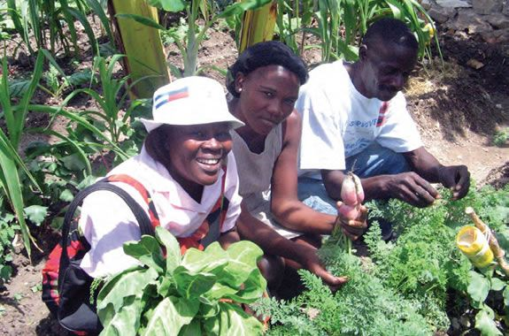 Semillas de San Juan, para combatir la pobreza y el hambre en Haití