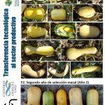 Avanzando hacia un nuevo cultivar op de zapallo anco: dos años de progreso genético en cucurbita moschata