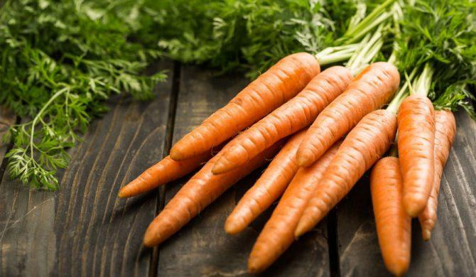 Como Cultivar Zanahoria