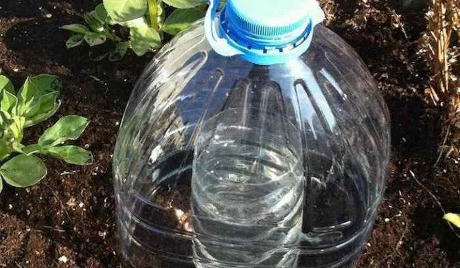 Descubre la técnica del goteo solar para ahorrar y filtrar agua en los cultivos