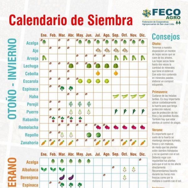 Calendario de Siembra Temporadas, Fecoagro